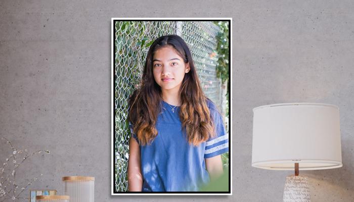 20x30 Framed Canvas